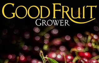 """Good Fruit Grower"" written in large thin yellow and white font above a pile of cherries"